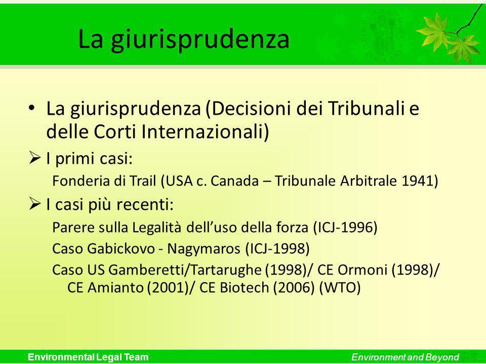 La giurisprudenza La giurisprudenza (Decisioni dei Tribunali e delle Corti Internazionali) I primi casi: