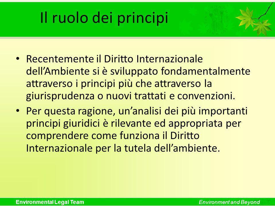 Il ruolo dei principi