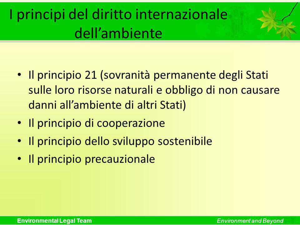 I principi del diritto internazionale dell'ambiente