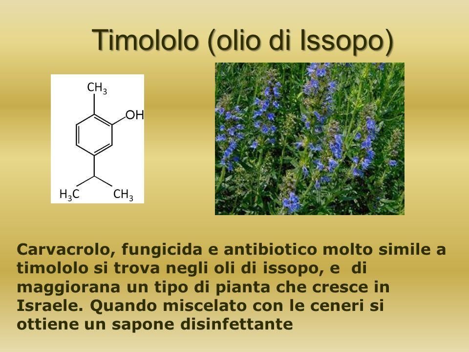 Timololo (olio di Issopo)