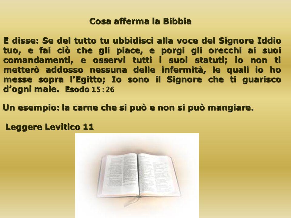 Cosa afferma la Bibbia