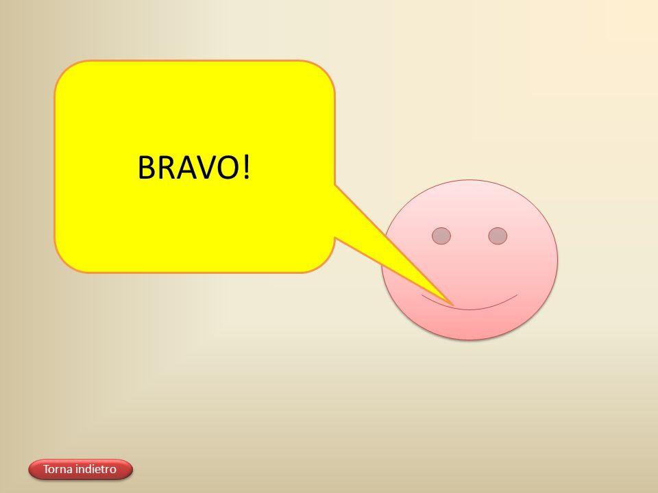 BRAVO! Torna indietro