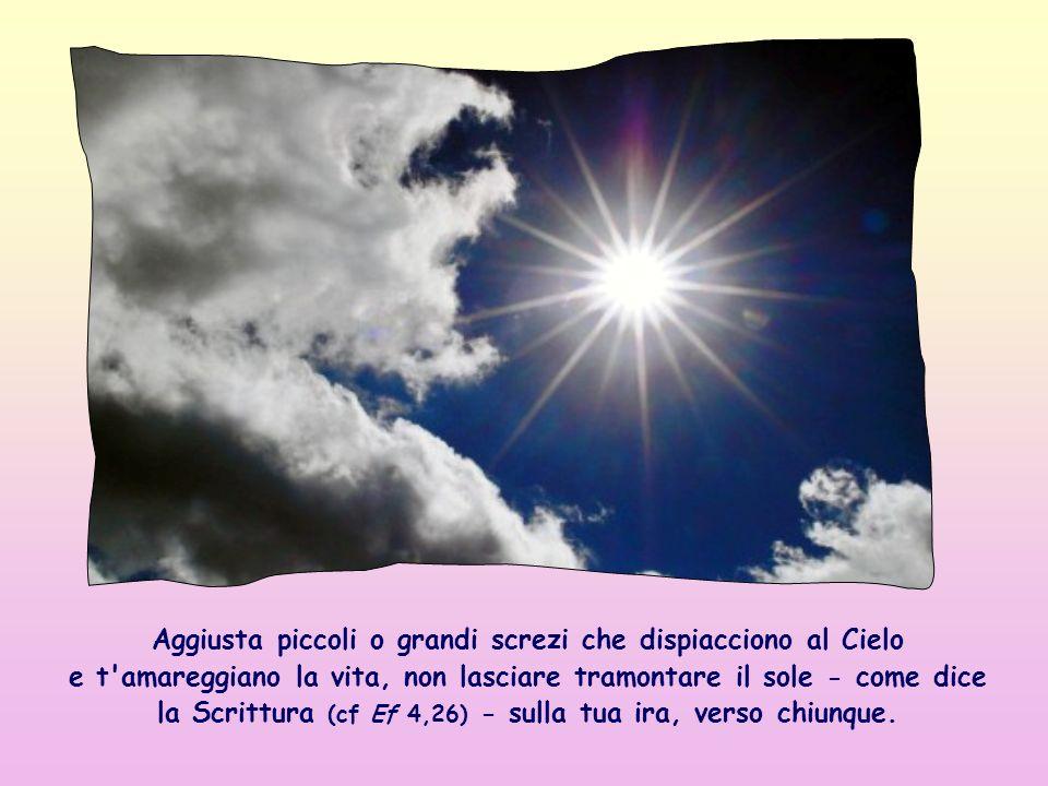 Aggiusta piccoli o grandi screzi che dispiacciono al Cielo e t amareggiano la vita, non lasciare tramontare il sole - come dice la Scrittura (cf Ef 4,26) - sulla tua ira, verso chiunque.
