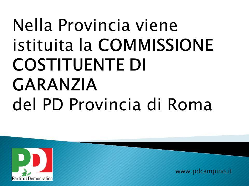 Nella Provincia viene istituita la COMMISSIONE COSTITUENTE DI GARANZIA