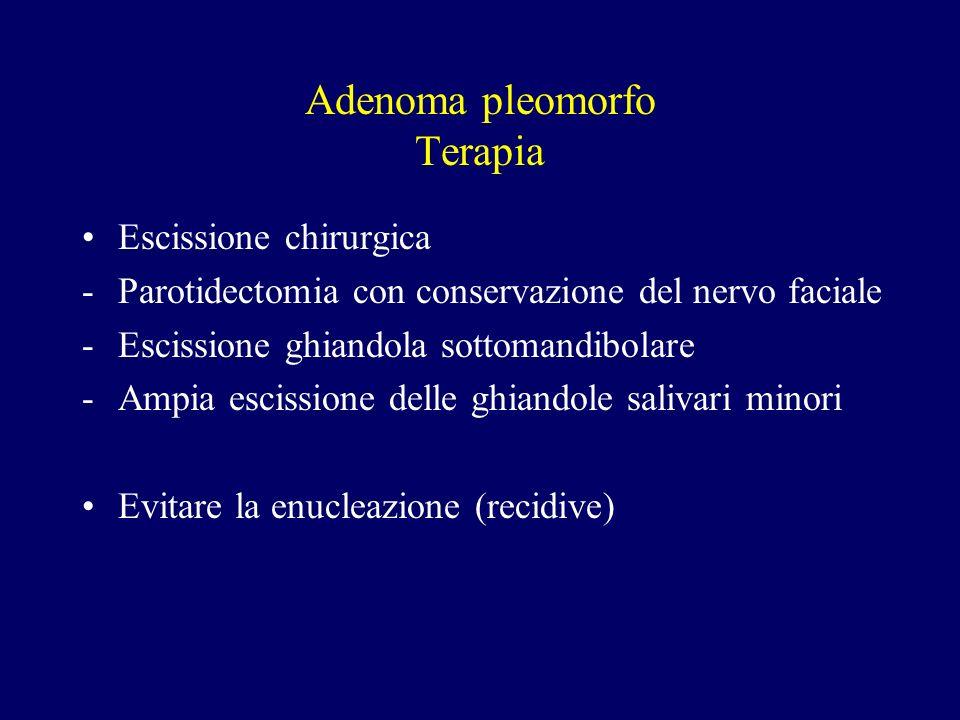 Adenoma pleomorfo Terapia