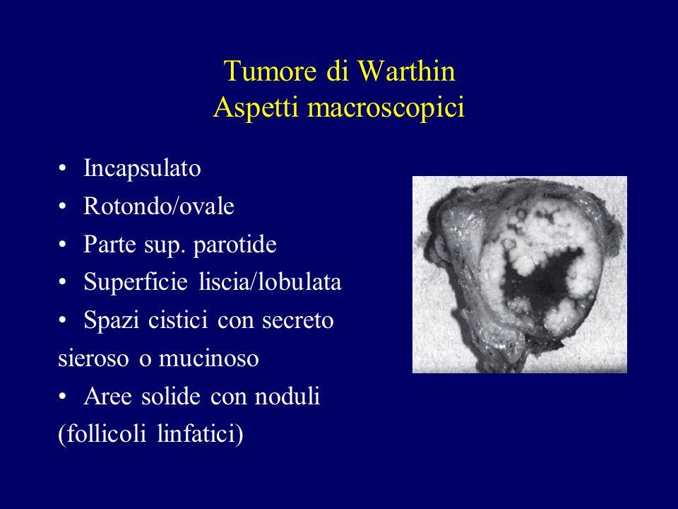 Tumore di Warthin Aspetti macroscopici