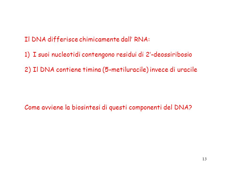 Il DNA differisce chimicamente dall' RNA: