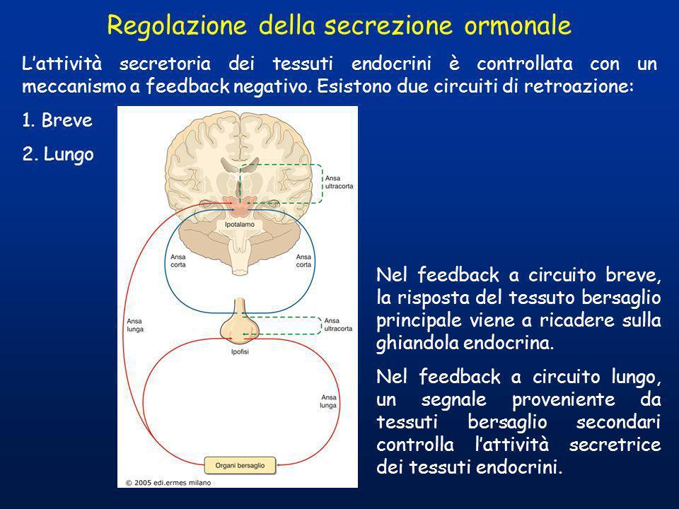 Regolazione della secrezione ormonale