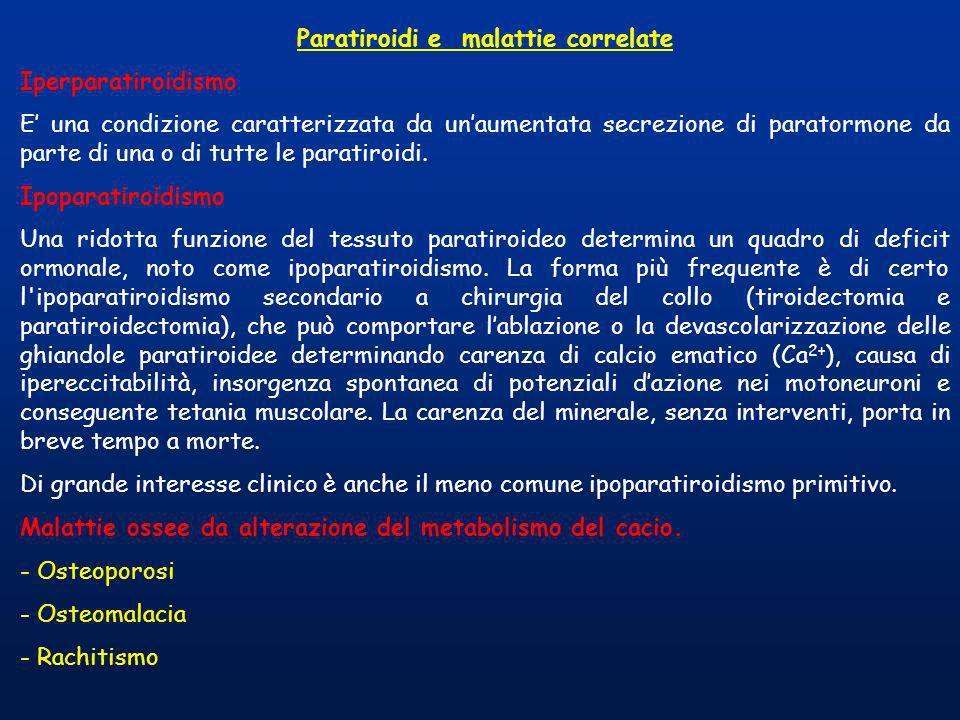 Paratiroidi e malattie correlate