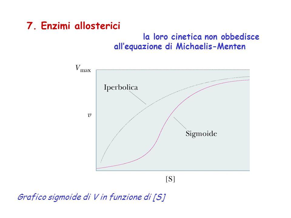 7. Enzimi allosterici la loro cinetica non obbedisce