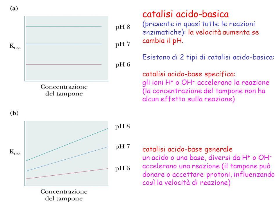 catalisi acido-basica
