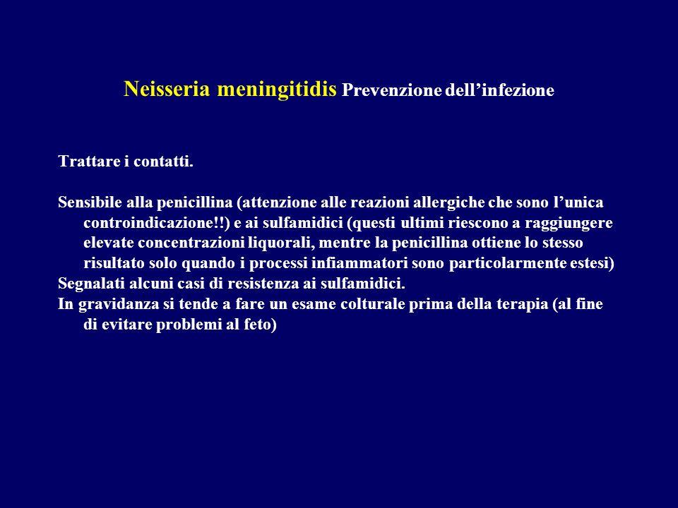 Neisseria meningitidis Prevenzione dell'infezione