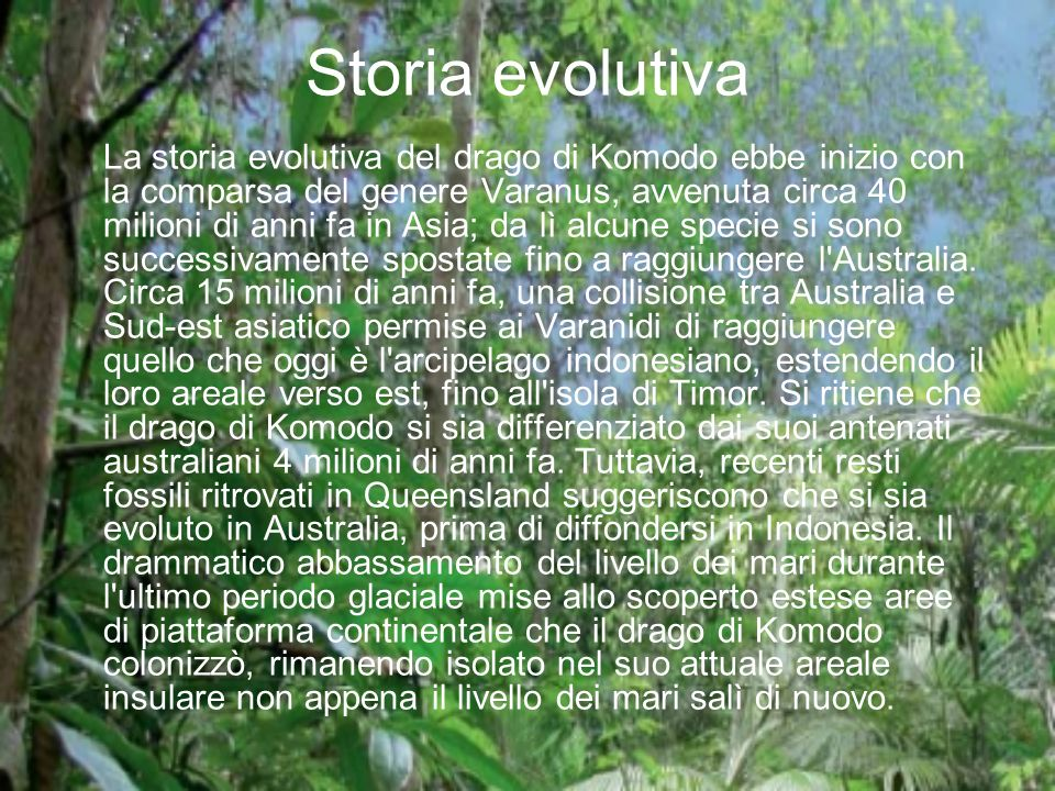 Storia evolutiva