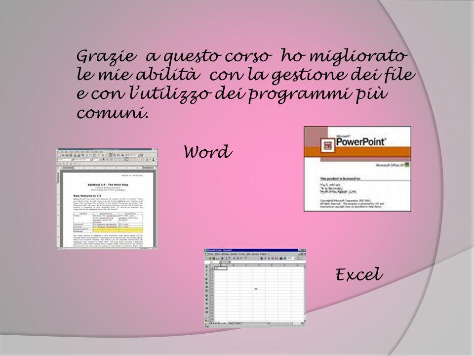 Grazie a questo corso ho migliorato le mie abilità con la gestione dei file e con l'utilizzo dei programmi più comuni.
