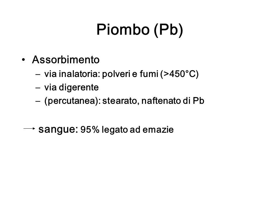 Piombo (Pb) Assorbimento sangue: 95% legato ad emazie
