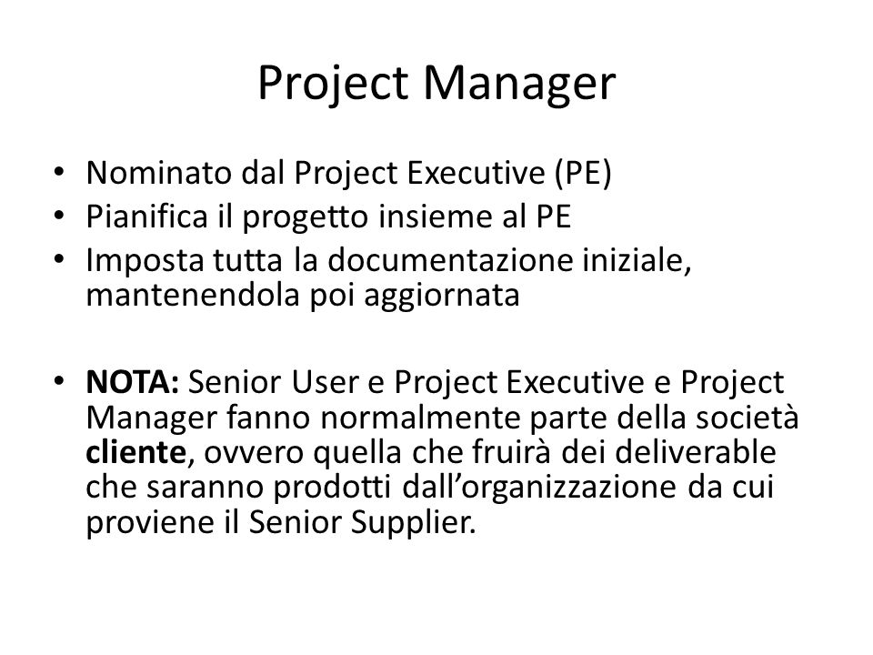 Project Manager Nominato dal Project Executive (PE)