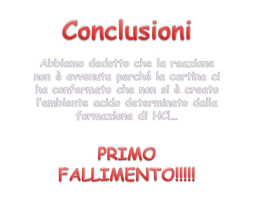 Conclusioni PRIMO FALLIMENTO!!!!!