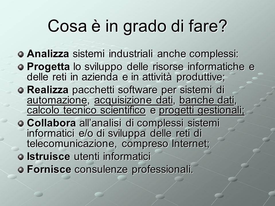 Cosa è in grado di fare Analizza sistemi industriali anche complessi: