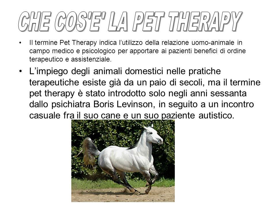 CHE COS E LA PET THERAPY