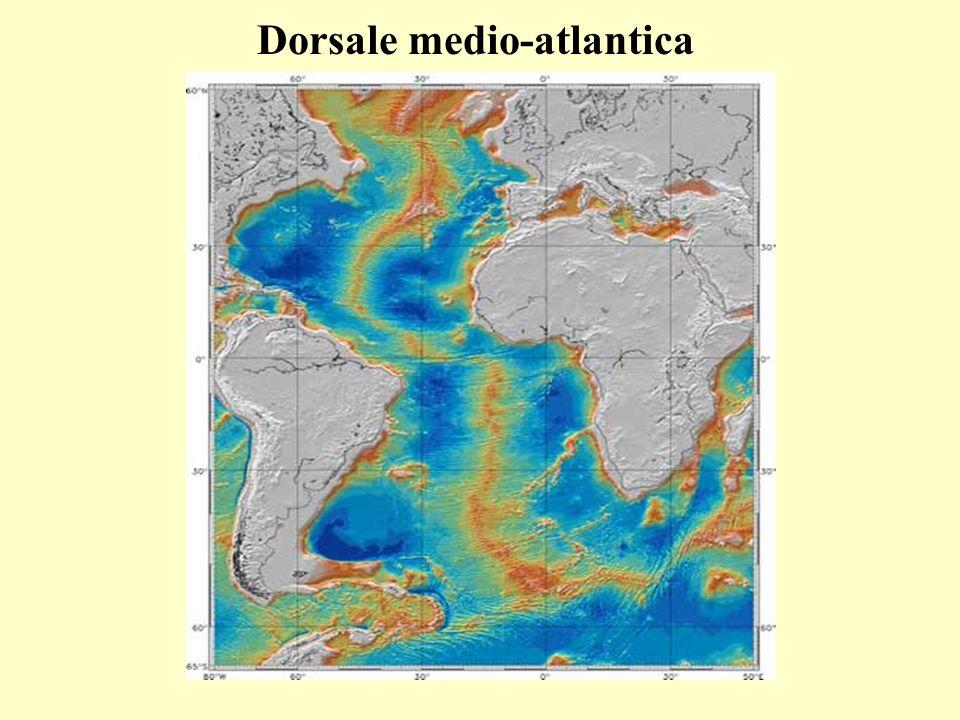 Dorsale medio-atlantica