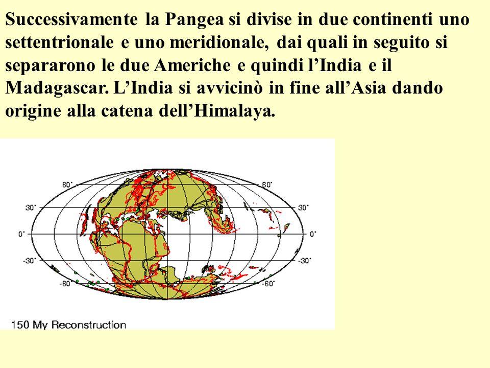 Successivamente la Pangea si divise in due continenti uno settentrionale e uno meridionale, dai quali in seguito si separarono le due Americhe e quindi l'India e il Madagascar.