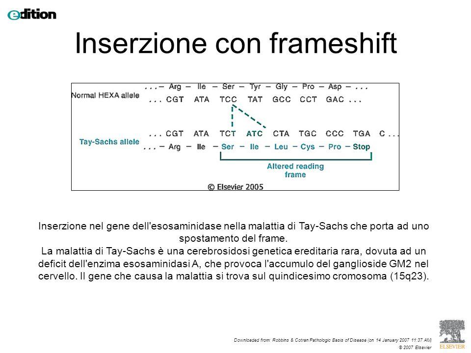 Inserzione con frameshift