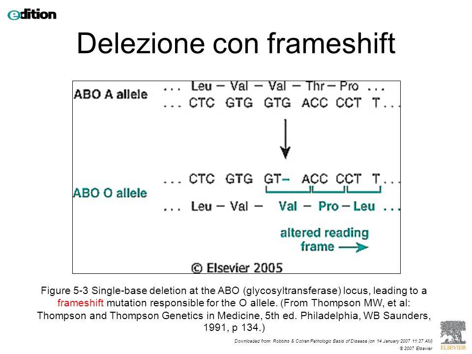 Delezione con frameshift
