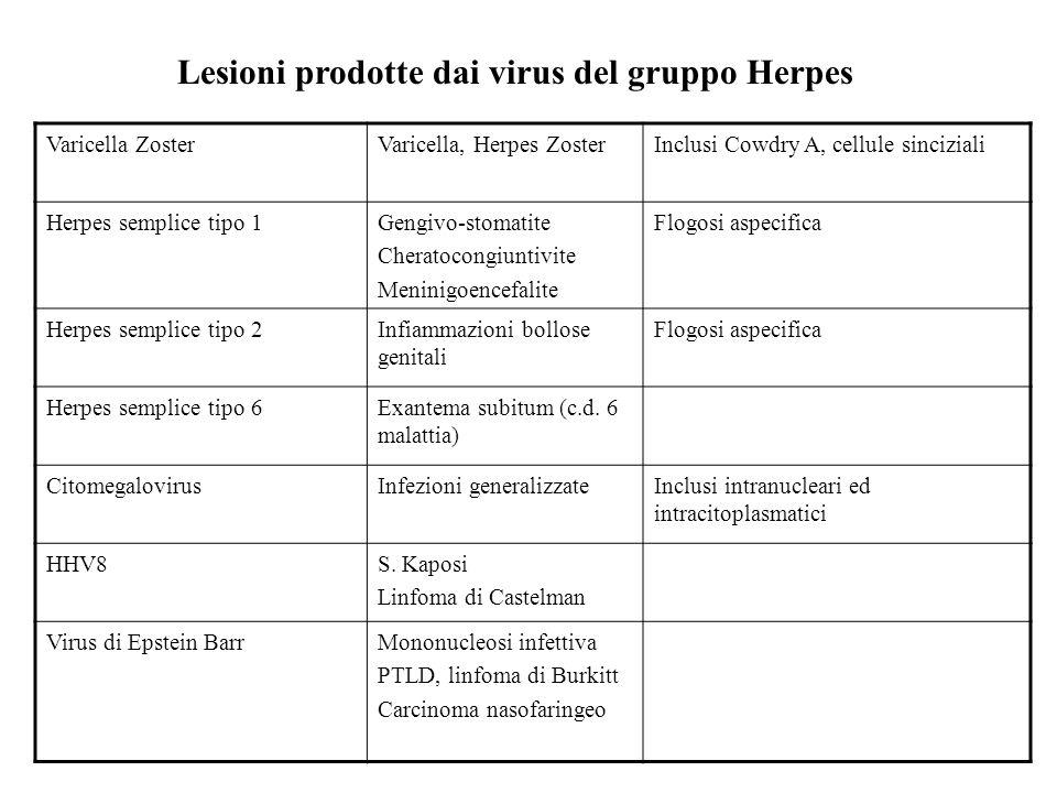 Lesioni prodotte dai virus del gruppo Herpes
