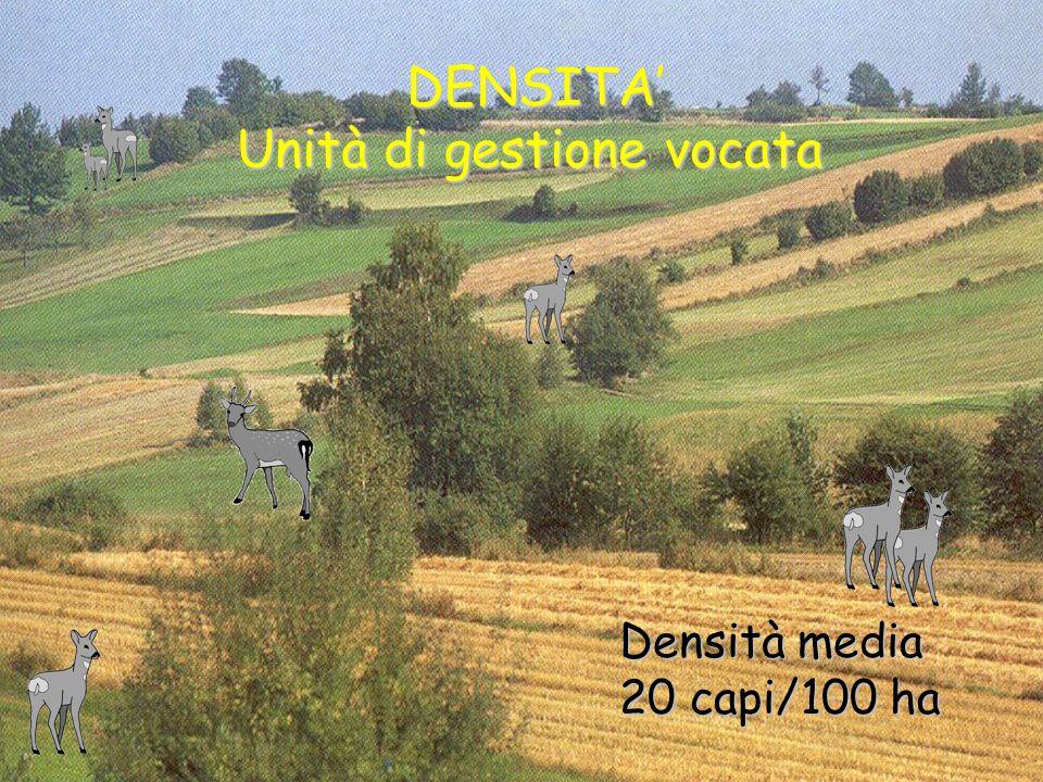 DENSITA' Unità di gestione vocata
