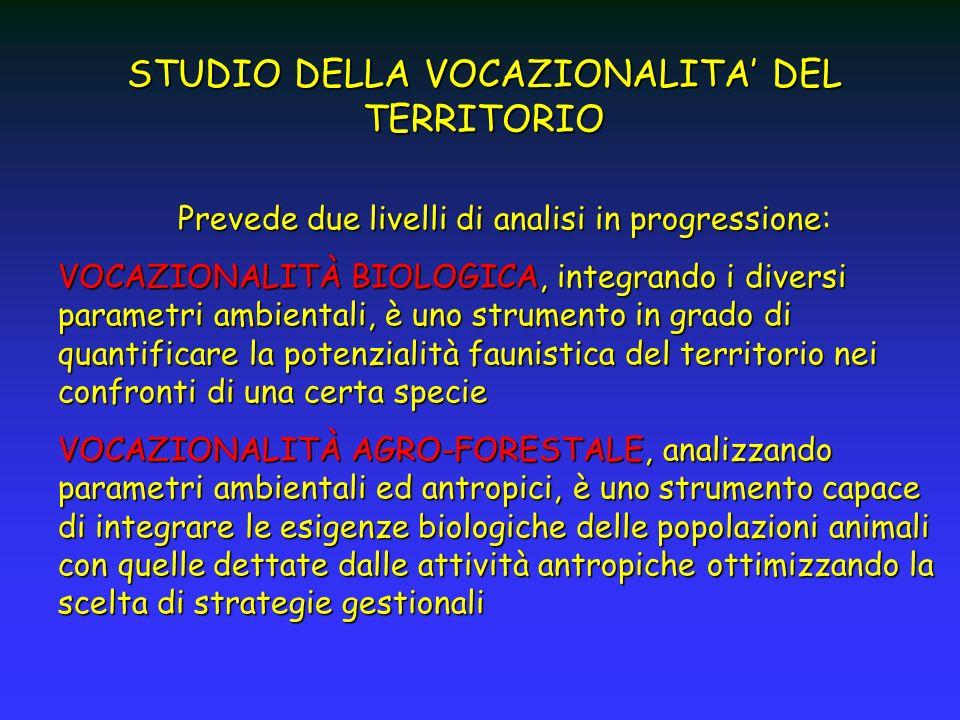 STUDIO DELLA VOCAZIONALITA' DEL TERRITORIO
