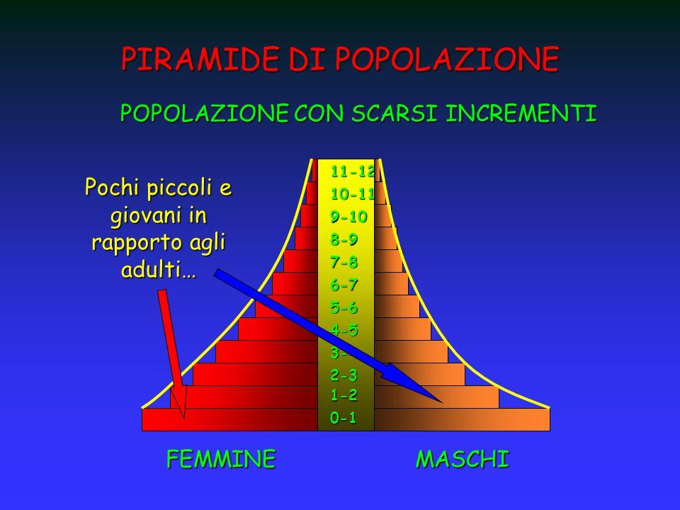 PIRAMIDE DI POPOLAZIONE