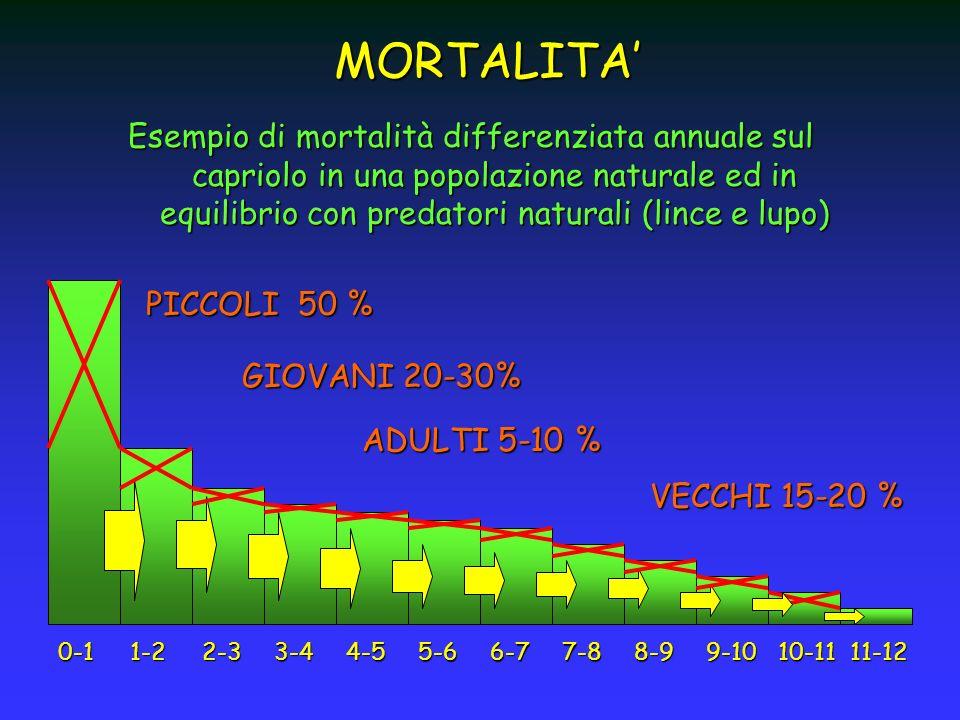 MORTALITA' Esempio di mortalità differenziata annuale sul capriolo in una popolazione naturale ed in equilibrio con predatori naturali (lince e lupo)
