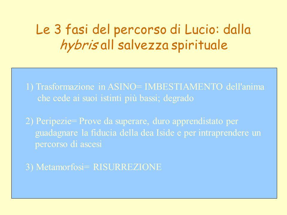 Le 3 fasi del percorso di Lucio: dalla hybris all salvezza spirituale