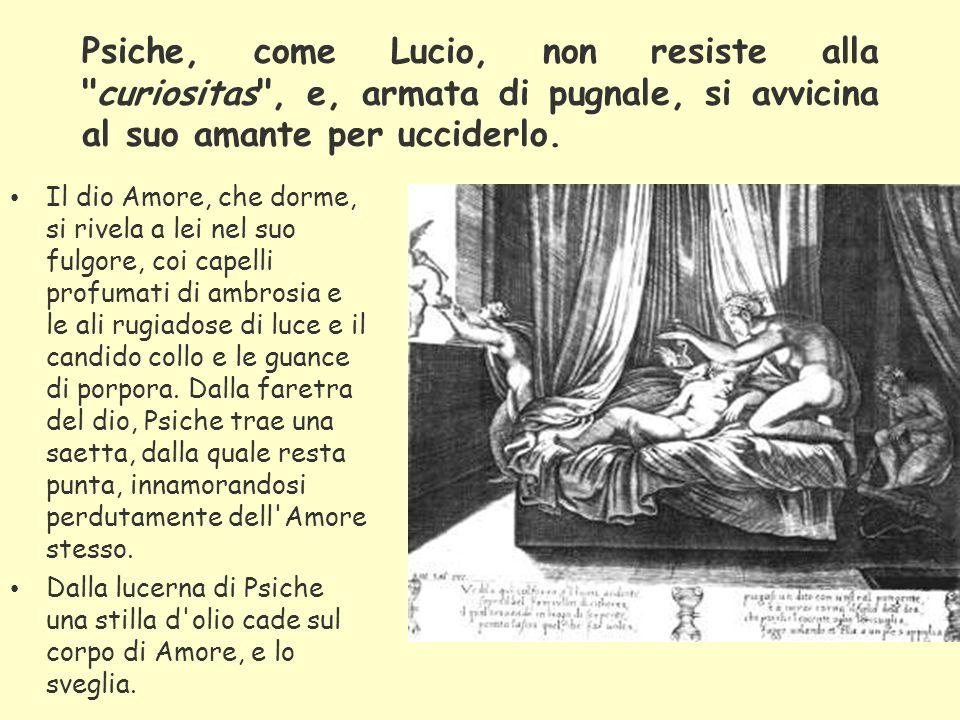 Psiche, come Lucio, non resiste alla curiositas , e, armata di pugnale, si avvicina al suo amante per ucciderlo.