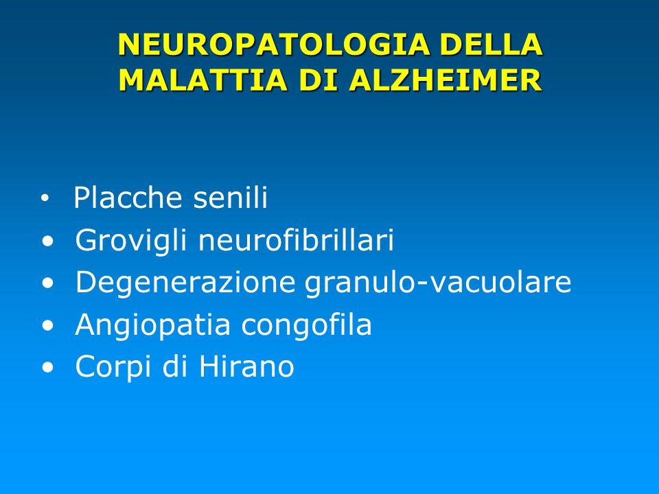 NEUROPATOLOGIA DELLA MALATTIA DI ALZHEIMER