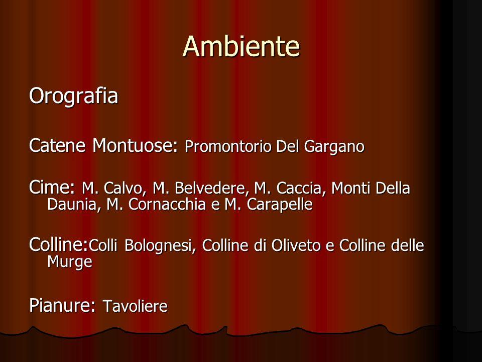 Ambiente Orografia Catene Montuose: Promontorio Del Gargano