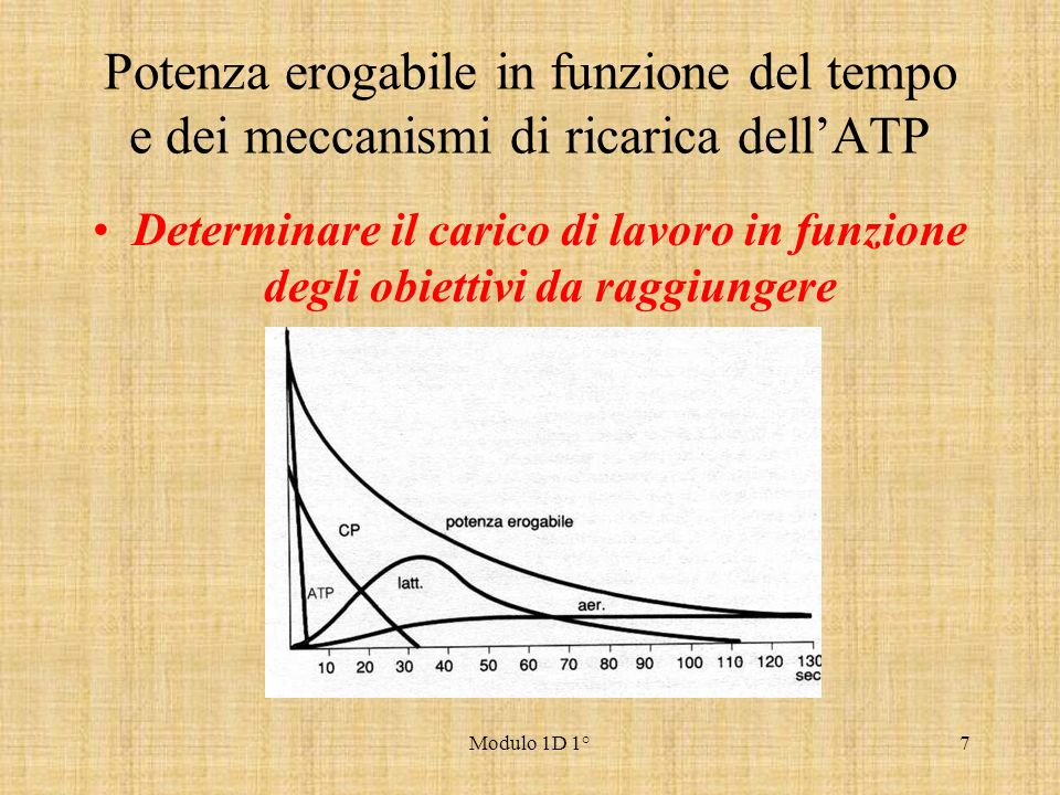Potenza erogabile in funzione del tempo e dei meccanismi di ricarica dell'ATP