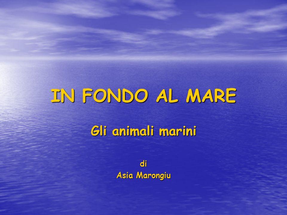 Gli animali marini di Asia Marongiu