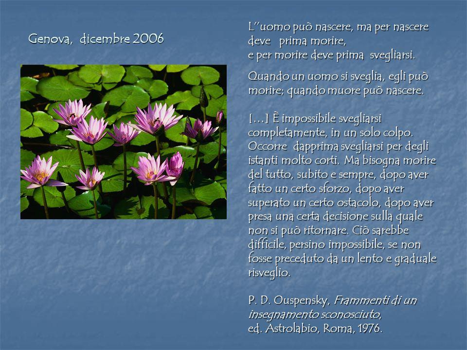 Genova, dicembre 2006 L''uomo può nascere, ma per nascere