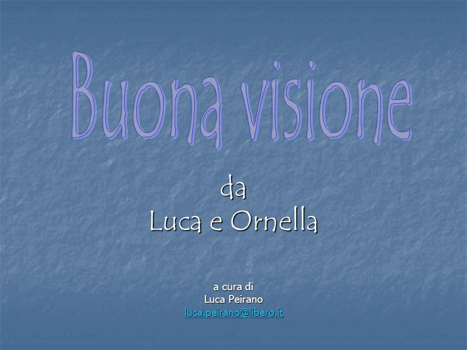 Buona visione da Luca e Ornella a cura di Luca Peirano