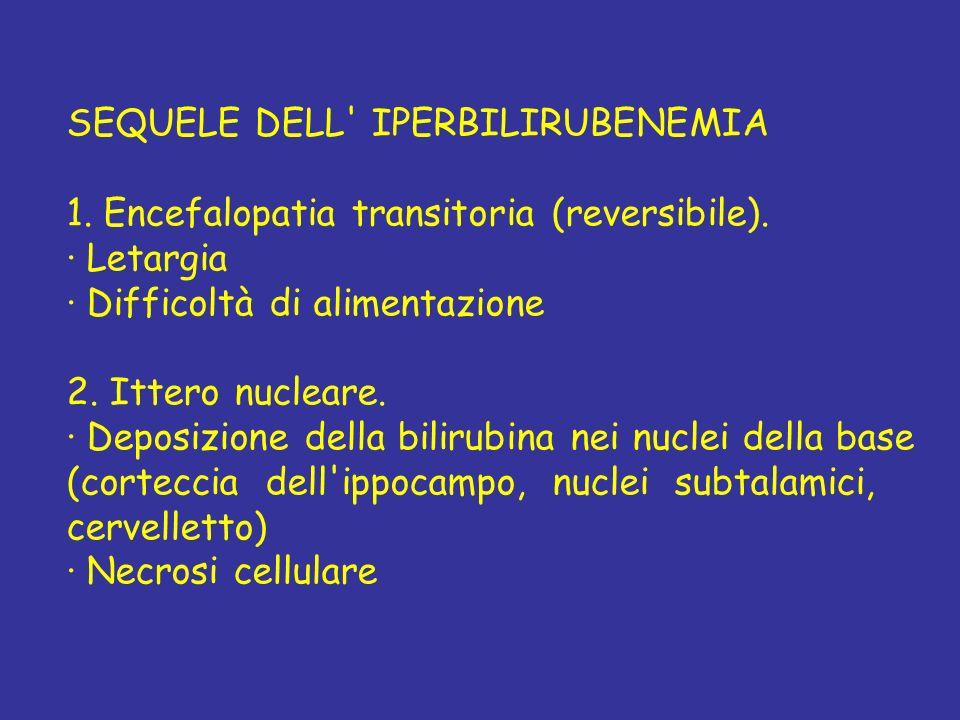SEQUELE DELL IPERBILIRUBENEMIA