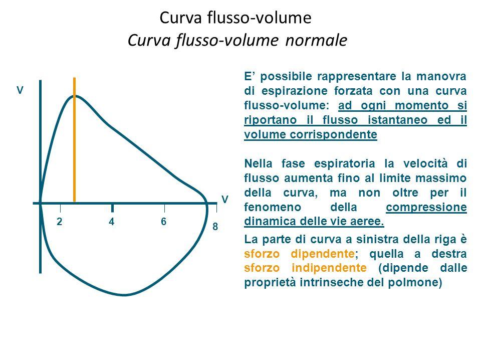 Curva flusso-volume Curva flusso-volume normale
