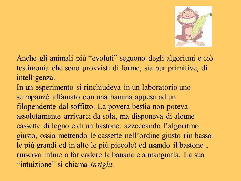 Anche gli animali più evoluti seguono degli algoritmi e ciò testimonia che sono provvisti di forme, sia pur primitive, di intelligenza.