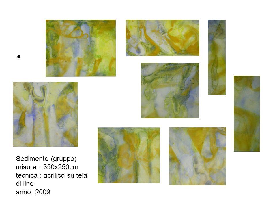 Sedimento (gruppo) misure:350x250cm tecnica : acrilico su tela di lino anno: 2009