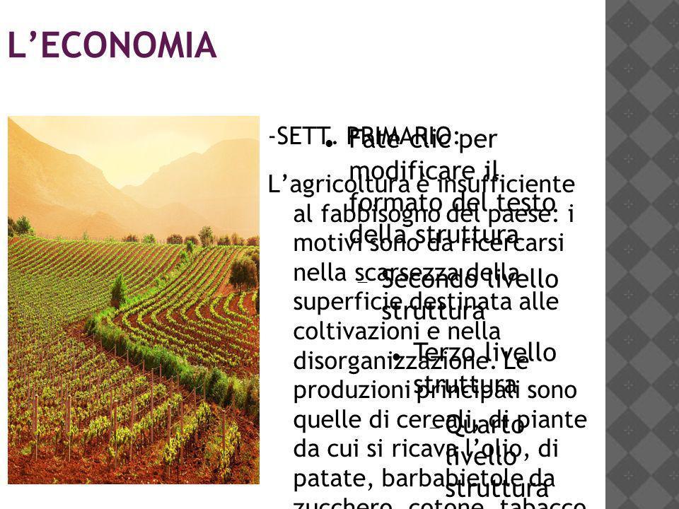 L'ECONOMIA -SETT. PRIMARIO: