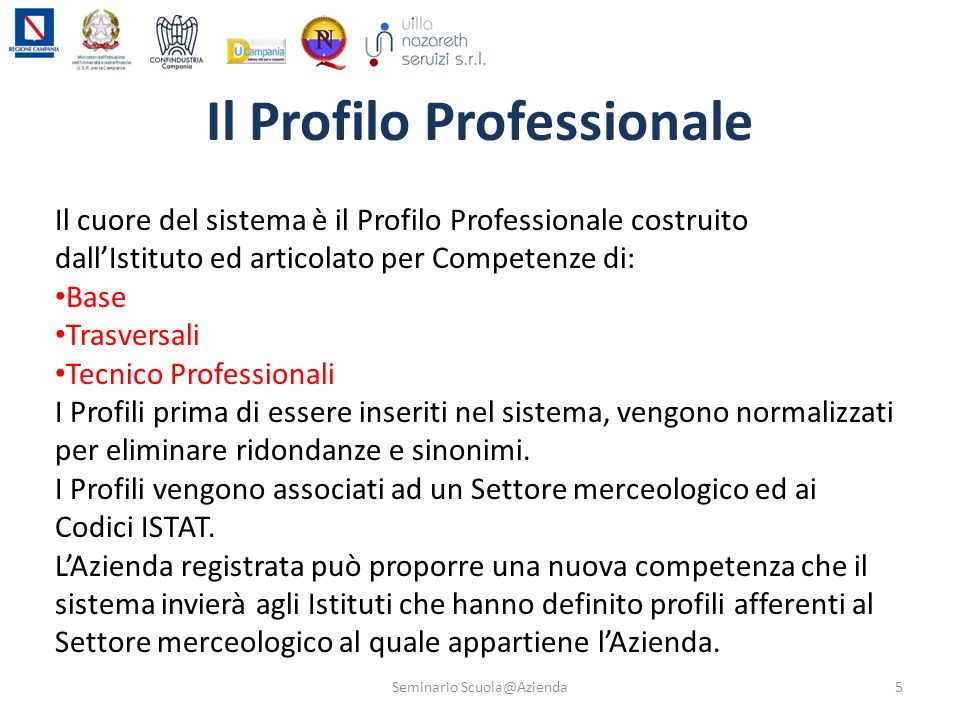 Il Profilo Professionale