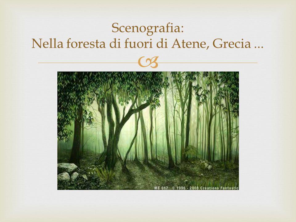 Scenografia: Nella foresta di fuori di Atene, Grecia ...
