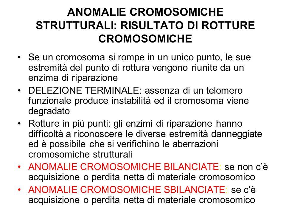ANOMALIE CROMOSOMICHE STRUTTURALI: RISULTATO DI ROTTURE CROMOSOMICHE