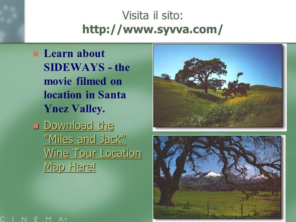 Visita il sito: http://www.syvva.com/