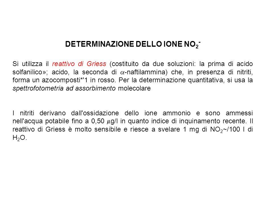 DETERMINAZIONE DELLO IONE NO2-